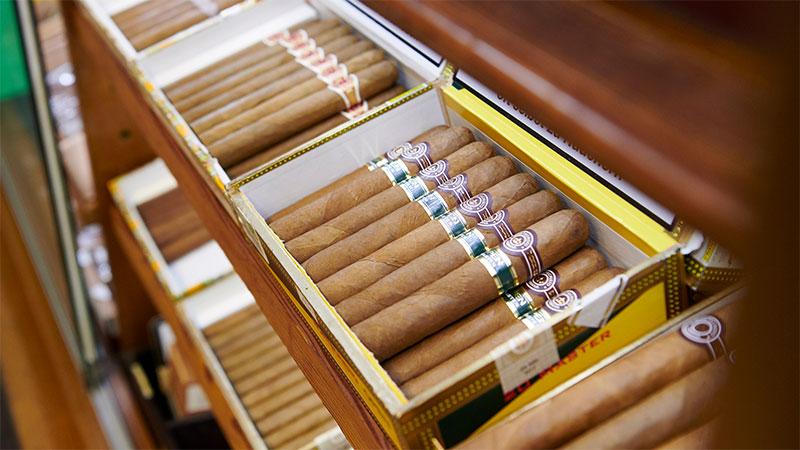 zigarren_intro
